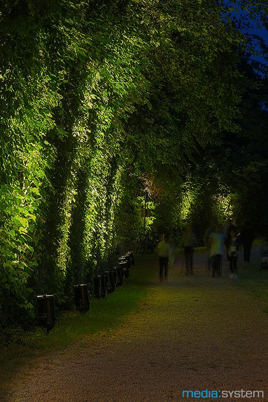 Illumination an der Schwarz-Weiß-Nacht in Untereisesheim
